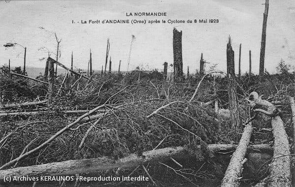 LE MENIL-DE-BRIOUZE (Orne) - La forêt d'Andaine après la tornade du 8 mai 1923