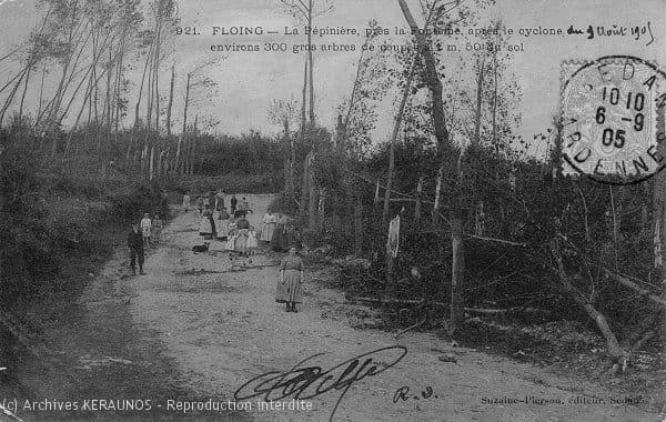FLOING (Ardennes) - La pépinière, près la Fontaine, après la macrorafale du 9 août 1905