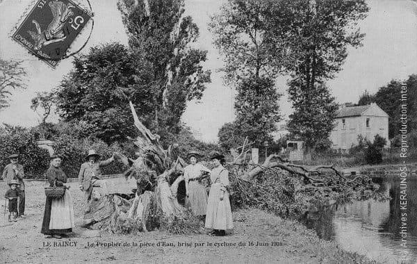 LE RAINCY (Seine-Saint-Denis) - Le peuplier de la pièce d'eau, brisé par la macrorafale destructrice du 16 juin 1908