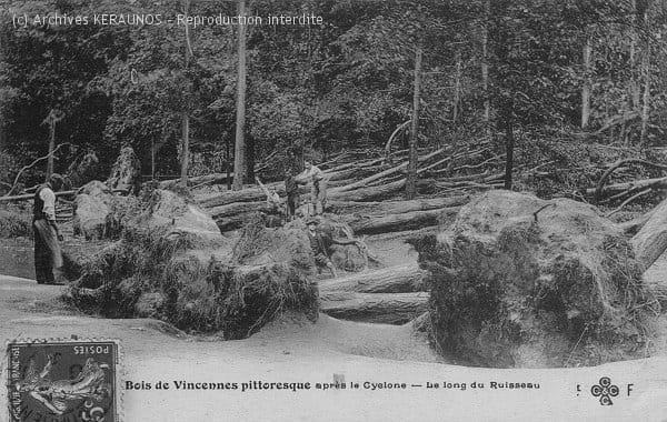 PARIS (Ville de Paris) - Bois de Vincennes - Arbres déracinés après la macrorafale du 16 juin 1908