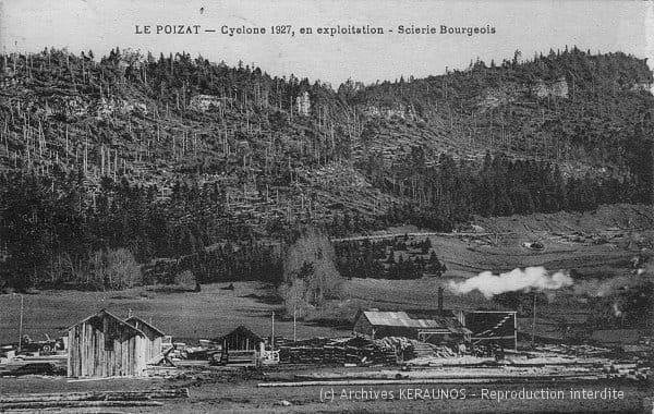 LE POIZAT (Ain) - Scierie Bourgeois - Aspect de la forêt après la rafale descendante du 11 août 1927